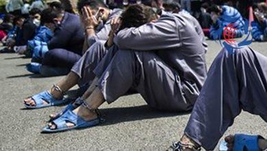 Photo of قاتلان و تبهکاران خشن تهران در حیاط آگاهی / اینجا بازار خلافکاران است + تصاویر