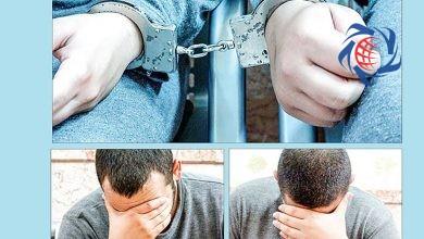 Photo of پسر 17 ساله مشهدی چگونه پولدار شد / همه به او می گفتند بی عرضه ای !