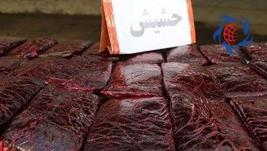 Photo of جاساز عجیب در کامیون حمل خیار راننده را به زندان فرستاد
