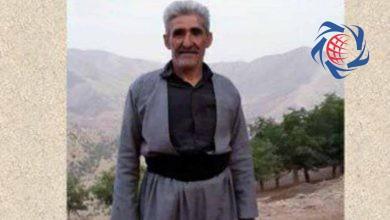 Photo of سقوط مرگبار نجم الدین مسعودی از کوه