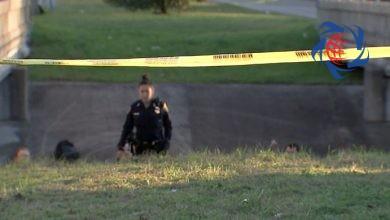 Photo of پیدا شدن جسد دختر 14 ساله پس از 31 سال